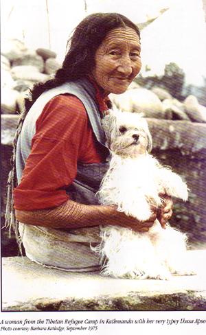 Tibetansk kvinna med hund